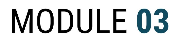 MODULE03